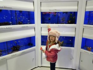 Sienna Visit to Fish Shop