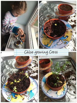 Chloe Growing Cress