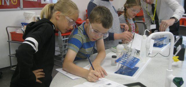 Year 5 attend Science Fair