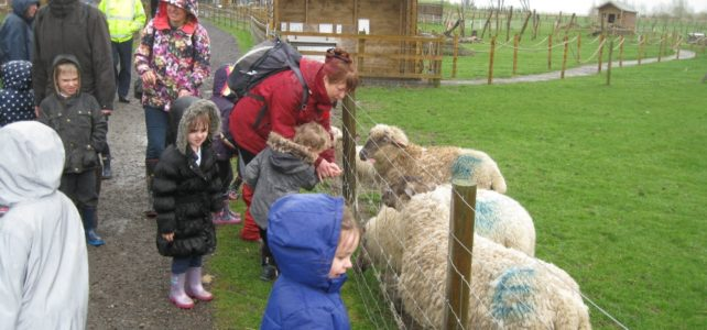 Foundation's Day Out to Green Dragon Eco Farm