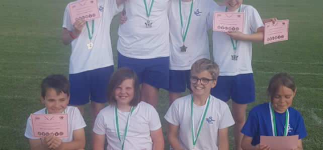 2nd Place for Twyford in the Rounders Tournament!