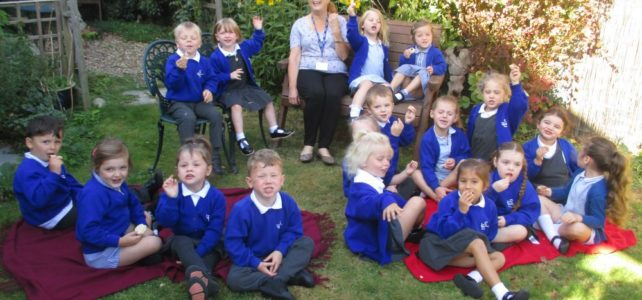 Nursery and Reception News!