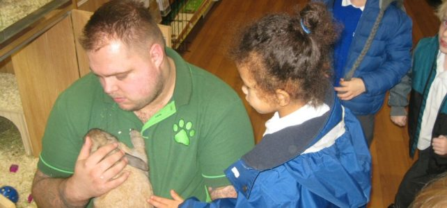 Reception Pet Shop Visit